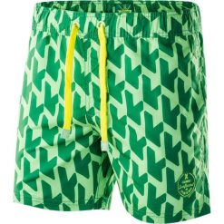 Kąpielówki męskie: AQUAWAVE Szorty męskie Waveshorts Verdant Green Print/Sulphur Spring r. XXL