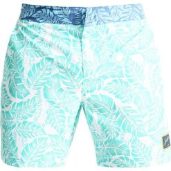 Kąpielówki męskie: Speedo VINTAGE  Szorty kąpielowe discovery green/white