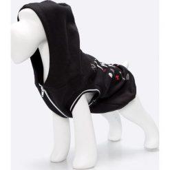 Medicine - Bluza dla psa Comfort Zone. Szare bluzy rozpinane damskie MEDICINE, l, z nadrukiem, z bawełny, z krótkim rękawem, krótkie, z kapturem. Za 59,90 zł.