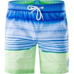 Kąpielówki męskie: AQUAWAVE Szorty męskie Shadow Blue/Green Stripes r. XL