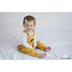 Spodnie niemowlęce: Ogrodniczki Królik Aqua