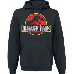 Jurassic Park Distressed Logo Bluza z kapturem czarny. Czarne bejsbolówki męskie Jurassic Park, xl, z nadrukiem, z kapturem. Za 164,90 zł.