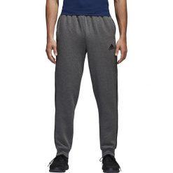 Spodnie męskie: CORE18 SW PNT