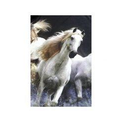 T-shirty damskie: T-shirt WHITE HORSES
