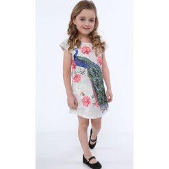 Sukienki dziewczęce: Sukienka z pawiem jasnoszara NDZ8128