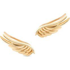 Kolczyki damskie: Zjawiskowe Złote Kolczyki – złoto żółte 375