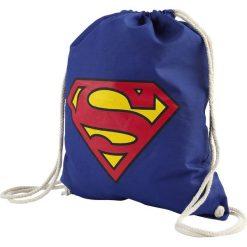 Torebki i plecaki damskie: Superman Logo Torba treningowa niebieski