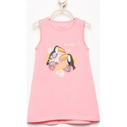 Odzież dziecięca: Sukienka z nadrukiem - Różowy