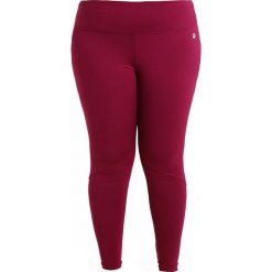 Legginsy: Raiski KORUDON PANTS Legginsy magenta/purple