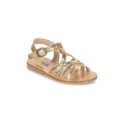 Sandały Dziecko  Citrouille et Compagnie  IOURINO. Szare sandały dziewczęce marki Citrouille et Compagnie. Za 143,20 zł.