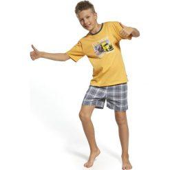 Bielizna chłopięca: Piżama chłopięca On The Way żółto-szara r. 158/164