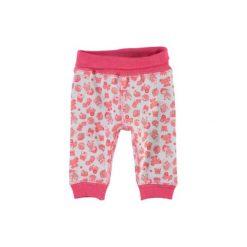 NAME IT Girls Spodnie dla wcześniaka NITWANT rouge red. Czerwone spodnie chłopięce Name it, z bawełny. Za 39,80 zł.