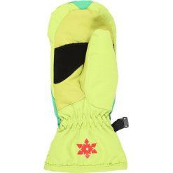Rękawiczki męskie: Flashy Stars ERDBEERE MITTEN Rękawiczki z jednym palcem green