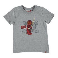 """T-shirty chłopięce z długim rękawem: Koszulka """"Thomas"""" w kolorze szarym"""