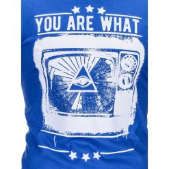 T-shirty męskie: T-SHIRT MĘSKI Z NADRUKIEM S816 – CHABROWY