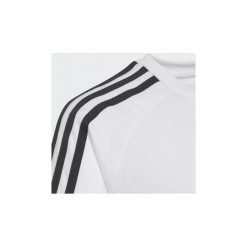 T-shirty z krótkim rękawem Dziecko  adidas  Koszulka California. Białe bluzki dziewczęce z krótkim rękawem Adidas. Za 99,95 zł.