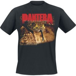 Pantera The Great Southern Trendkill T-Shirt czarny. Czarne t-shirty męskie z nadrukiem Pantera, xl, z okrągłym kołnierzem. Za 74,90 zł.