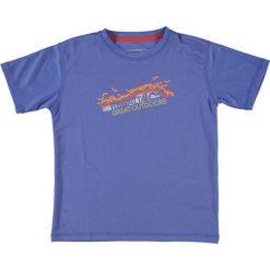 T-shirty chłopięce z nadrukiem: T-shirt w kolorze niebieskim