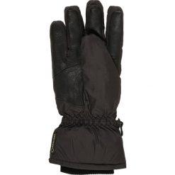 Rękawiczki męskie: Roeckl Sports CERVINO GTX  Rękawiczki pięciopalcowe black