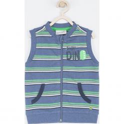 Bluza. Szare bluzy chłopięce rozpinane marki BABY DINO, z napisami, z bawełny. Za 59,90 zł.