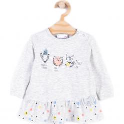 Koszulka. Szare bluzki dziewczęce bawełniane FAMILY FOREST, z aplikacjami, z długim rękawem. Za 34,90 zł.