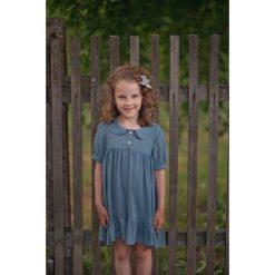 Sukienki dziewczęce: Sukienka Blueberry