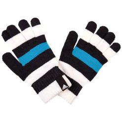 Rękawiczki męskie: Rękawiczki w kolorze biało-niebiesko-czarnym