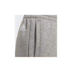 Spodnie treningowe Dziecko adidas  Spodnie Essentials Linear. Szare spodnie chłopięce Adidas. Za 149,00 zł.