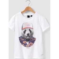 """T-shirty chłopięce z krótkim rękawem: T-shirt z nadrukiem """"niedźwiedź"""" 8 – 16 lat"""