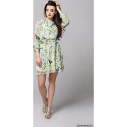 Sukienki: Sukienka Lily