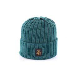 Czapki Refrigiwear  B01600. Zielone czapki zimowe męskie Refrigiwear. Za 193,70 zł.