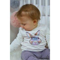 Bluza dziecięca królik fioletowy. Fioletowe bluzy dziewczęce rozpinane marki bonprix, z nadrukiem. Za 85,00 zł.