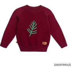 Bluzy chłopięce rozpinane: Bluza flora 03
