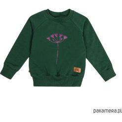 Odzież chłopięca: Bluza flora 01
