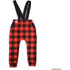 Spodnie z szelkami w czerwoną kratę 68-134. Czerwone spodnie dresowe dziewczęce Pakamera, w kratkę, z dresówki. Za 79,00 zł.