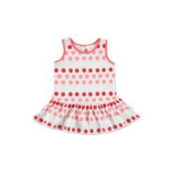 Anna & tom  Mini Girls Sukienka w kropki kolor różowy. Czerwone sukienki niemowlęce marki anna & tom, na lato, w kropki, z bawełny, mini. Za 27,50 zł.