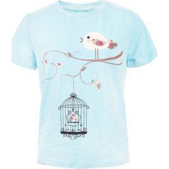 T-shirty chłopięce: Koszulka BIRD KIDS PASTEL BLUE 134