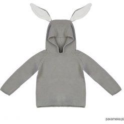 Odzież chłopięca: sweterek królik (szary)