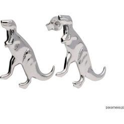 Srebrne kolczyki sztyfty dinozaur t-rex. Szare kolczyki damskie Pakamera, srebrne, na sztyftcie. Za 79,00 zł.