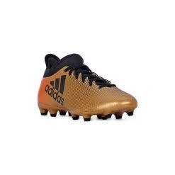 Buty sportowe męskie: Buty do piłki nożnej adidas  X 17.3 FG