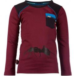 """Koszulka """"Ant Farm"""" w kolorze bordowo-antracytowym. Czerwone t-shirty chłopięce z długim rękawem marki 4FunkyFlavours Kids, z nadrukiem. W wyprzedaży za 82,95 zł."""