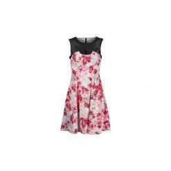 Sukienki hiszpanki: Sukienki krótkie Manoukian  613362
