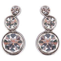 Kolczyki damskie: Dyrberg/Kern LINI Kolczyki shiny silvercoloured