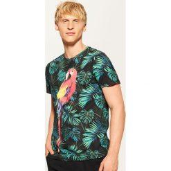 T-shirt z papugą - Czarny. Czarne t-shirty męskie marki House, l, z nadrukiem. Za 49,99 zł.
