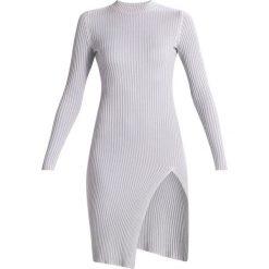 Sukienki dzianinowe: Ivyrevel EXTASE Sukienka dzianinowa grey