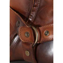 Botki męskie: Shoe The Bear APACHE Botki kowbojki i motocyklowe brown
