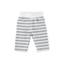STEIFF Baby Nicki Spodnie jogging paski softgrey. Szare spodnie chłopięce marki Steiff, w paski, z bawełny. Za 99,00 zł.