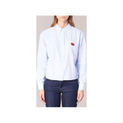 Koszule Tommy Jeans  THDW STRIPE SHIRT L/S 24. Niebieskie koszule jeansowe damskie marki Tommy Jeans, l. Za 319,20 zł.