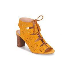 Sandały damskie: Sandały André  THEI