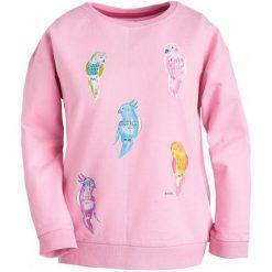 Bluzy dziewczęce: Bluza z nadrukiem dla dziewczynki 9-13 lat